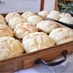 メロンパン/おうちベーカリー/今日のおやつ/手作りパン/ハンドメイド/グルメ/... 今日のおやつ。 息子のリクエストでメロン…