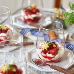 手作りお菓子/お菓子作り/おうちカフェ 今日のおやつ。 アガーで簡単にミルクプリ…