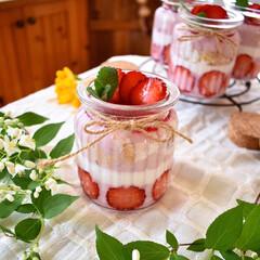 手作りおやつ/手作りお菓子/手作りスイーツ/手作りケーキ/春/おやつタイム/... 今日のおやつ。 いちごミルクプリン。 下…(1枚目)