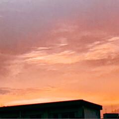 夕日 今の空 暑かった今日 夕日を 見ながら …(3枚目)