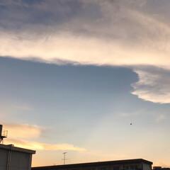 空/雲/夕焼け/癒し 今日も 綺麗な雲から 迫力のある雲に代わ…(3枚目)