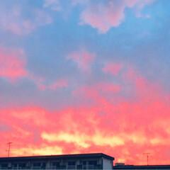 夕方の空/令和の一枚/風景/暮らし/住まい PM7時の 空  ふと窓の外を見ると真っ…
