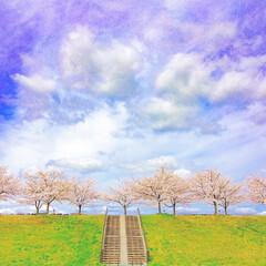 桜/旅が仕事/スローライフ/写真で伝えたい私の世界/ノマド/のんびり/... 観光地で人混み疲れするより、 穴場でのー…