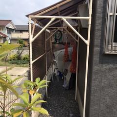 波板/イレクターパイプ/物置/自転車小屋/おすすめアイテム/DIY 家の裏のスペースに物置&自転車小屋を作り…