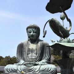 わたしのお気に入り/旅行/フォロー大歓迎/LIMIAおでかけ部/おでかけワンショット 私の好きなモノ💕 鎌倉の大仏🐾