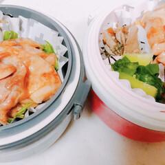 マグロ漬け/人参のマリネ/チンゲン菜/照り焼きチキン/お弁当 今日の息子娘弁当🍱 ・照り焼きチキン ・…