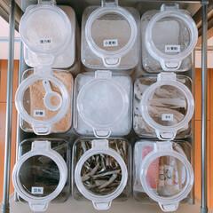 調味料収納/キッチン収納/キッチン/homecoordy/収納 ワンプッシュコンテナで 調味料収納してい…