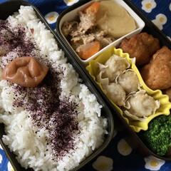 三島食品 ゆかり 26g 775592(ふりかけ)を使ったクチコミ「肉じゃが、唐揚げでボリューム弁当! やっ…」
