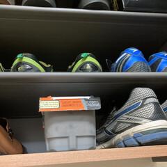●エステー 備長炭ドライペット3個パック ●お得な5パックセット | 備長炭ドライペット(部屋用)を使ったクチコミ「据え置き型の除湿剤をあちこち設置していま…」