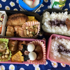 三島食品 ゆかり 大袋 60g 1袋(ふりかけ)を使ったクチコミ「ついにお弁当スタート! 保冷剤増やして、…」(1枚目)