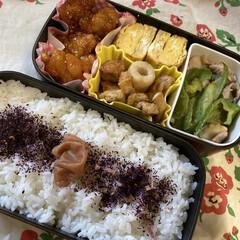 三島食品 ゆかり梅入り 22g×10袋入×(ふりかけ)を使ったクチコミ「ある日のパパ弁当。 お弁当のおかずケース…」