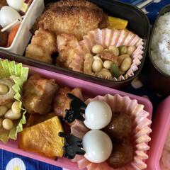 三島食品 ゆかり 大袋 60g 1袋(ふりかけ)を使ったクチコミ「ついにお弁当スタート! 保冷剤増やして、…」(2枚目)