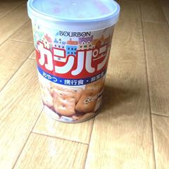 ブルボン 缶入カンパン 28899(ギフトセット)を使ったクチコミ「賞味期限が近づいてきたカンパンを食べた。…」