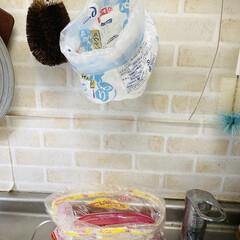 レンコス スポンジブラシ 哺乳瓶 カップスポンジブラシ クリーニングブラシ スタンド ボトルガラス(掃除用ブラシ)を使ったクチコミ「パン袋は、捨てずに生ゴミ袋にリサイクルし…」