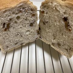 ケーキクーラー 563(その他製菓、製パン用品)を使ったクチコミ「クルミパン焼きました。 やっぱり夏はパン…」
