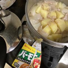 ハウス バーモントカレー 中辛 230g×5個(イカ惣菜、加工品)を使ったクチコミ「わがやはバーモントカレーの中辛がお気に入…」
