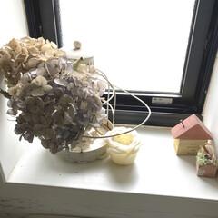 フレグランスキャンドル ピーチローズ 140g | グラーストウキョウ(アロマグッズ)を使ったクチコミ「今年つんだアジサイドライを飾っています。…」(1枚目)