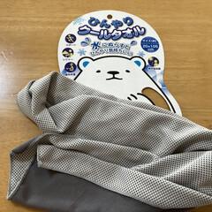 タオル スポーツタオル 汗拭きタオル クールタオル(バスマット)を使ったクチコミ「今日はとっても暑い1日でした。 今年買っ…」