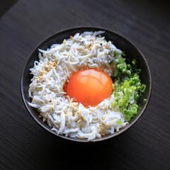 しらす丼/漬け卵黄/たまごかけご飯/卵かけご飯/LIMIAごはんクラブ/わたしのごはん/... 釜揚げしらすと漬け卵黄の丼でおはようござ…(1枚目)