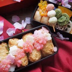 いなり寿司/料理好きな人と繋がりたい/弁当/春のお弁当/手作り弁当/お弁当/... おはようございます☀ 自分らしからぬかっ…
