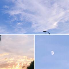 台風一過/空 台風の後の空  月も満ちてきた。 今日は…