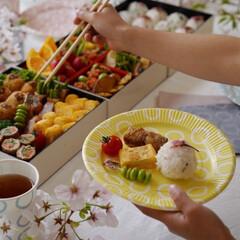 サンナップ/サンリオ/お弁当/ピクニック/ピクニック弁当/ホームパーティー/... お花見にぴったりなスモーキーパステルカラ…