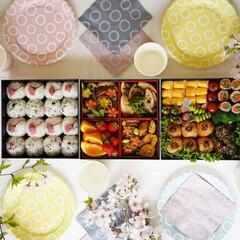 サンナップ/ピクニック/紙コップ/紙皿/日本製/おうちカフェ 桜の塩漬けを載せたおにぎりが春らしいお弁…