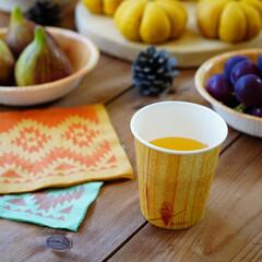 サンナップ/キノシリーズ/ナチュラル/紙コップ/ピックニック/食器/... キノシリーズの簡易食器は木目柄でナチュラ…