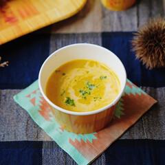 サンナップ/紙皿/スープ/キャンプ/ナチュラル/アウトドア/... だんだんと秋も深まり、温かいスープが美味…