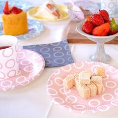 サンナップ/お洒落/ティータイム/紙皿/おうちカフェ/日本製 ティータイムは、可愛い食器で楽しさアップ…