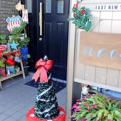 クリスマス/リビング/玄関/キッチン/キャンドゥ/ダイソー/... 今年はほとんど買わず… そろそろ新しい物…