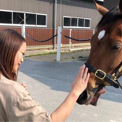 馬/ありがとう平成/平成最後の一枚 大好きな愛馬に逢いに… 平成最後に癒され…