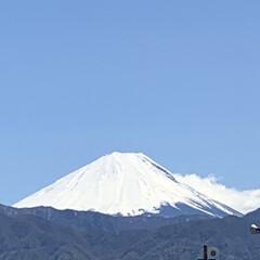 富士山/景色風景/景色/景色がキレイ 思わずパシャリ!! とても良い天気で富士…