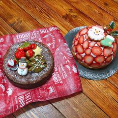 レアチーズケーキ/LIMIAスイーツ同好会/LIMIAスイーツ愛好会/サンタクロース/アイシングクッキー/ドームケーキ/... クリスマスパーティのケーキは大人数なので…