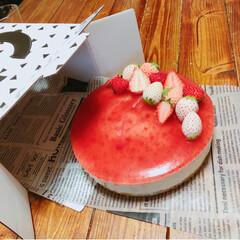 チーズケーキ/冷たいお菓子/冷たいデザート/レアチーズケーキ/手作り/お菓子作り/... 甥っ子の誕生日! リクエストでイチゴレア…