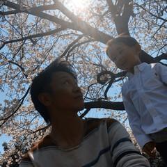 春のフォト投稿キャンペーン/はじめてフォト投稿 進級式帰りにお花見♪♪パシャリ♪♪