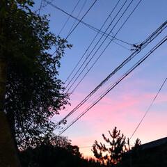 自然の美/雲/空 久しぶりに、マジックアワーになった空の下…
