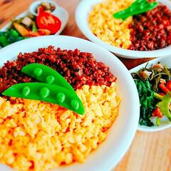 料理/作りおき/ワンプレート/夕飯/和食/簡単ごはん/... 今日の晩ごはん ✯肉味噌そぼろDON…