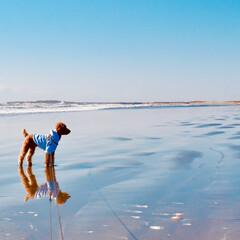 海近/BEACH/トイプードルレッド男の子/トイプードル/LIMIAペット同好会/フォロー大歓迎/... 朝の砂浜で、逆さ犬🐶