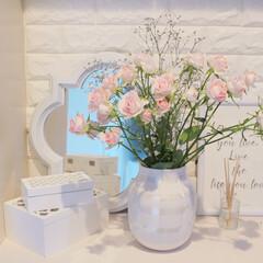 オマジオパール/ケーラー オマジオ/ケーラー/お花のある暮らし/お花/春/... 玄関のお花🌷 先月ケーラー オマジオパー…