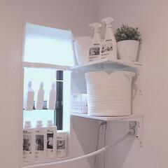 洗面所DIY/洗面所/棚DIY/シェルフDIY/シェルフ/棚/... 洗面所のこの棚もわたしがDIYで作ったも…
