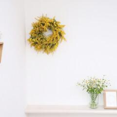 ダイニング/手作りリース/花のある暮らし/マトリカリア/壁掛けサンカク/ミモザ/... 初投稿。 我が家のダイニングです。 手作…