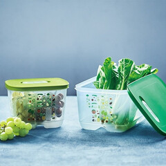 タッパー/ベントスマート/保存容器/野菜/メカニズム/通気孔/... 保存容器でおなじみの「タッパー」〔タッパ…