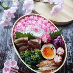 桜咲け弁当/春待ち弁当/豚の角煮/わっぱ弁当/旦那弁当/100均/... 豚の角煮弁当 主人用のお弁当です。 豚の…