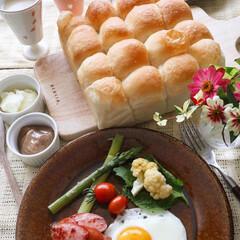 朝食/甘酒/ちぎりパン/手作りパン/LIMIAごはんクラブ/おうちごはんクラブ/... 甘酒入りのちぎりパン お砂糖は使わず甘酒…