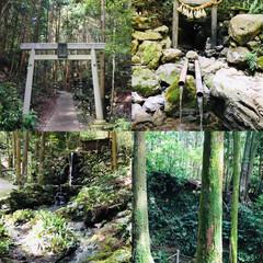 初めての/ジブリアニメの世界/日本史/ドライブ/おでかけ/休日/... 三重県に住んでから早14年が経ちました。…