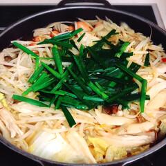 鍋/お得/鍋料理/野菜たっぷり/もつ鍋/おうちごはん部/... 家に帰ると  「自分たちでご飯作ってくだ…(1枚目)