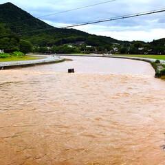 通勤/どしゃ降り/自然/濁流/大雨/梅雨前線/... 一昨日夜からの大雨で、昨日は川の水位が上…