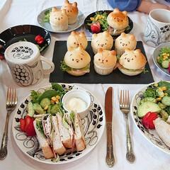 テーブルコーディネート/お子様ランチ/ハンバーガー/ホットサンド/手作りパン/ワンプレート/... 手作りパンランチ🐻   胡桃入り食パンを…