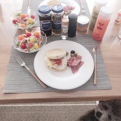 おはよう/LIMIAペット同好会/LIMIAごはんクラブ/ペット/ペット仲間募集/犬/... あたちの朝ごはんもありましゅか?